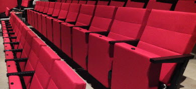 picture of Cinema seat